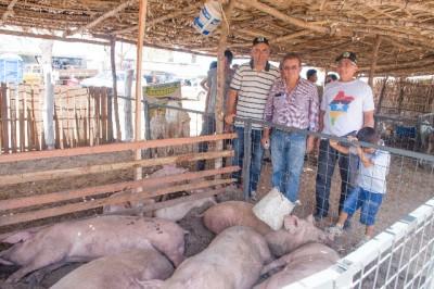 Raimundo Coelho visita estande de animais, (suínos), com o presidente do Sindicato dos Produtores Rurais e representante do Governo Estadual.