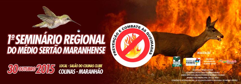 banner-_queimadas