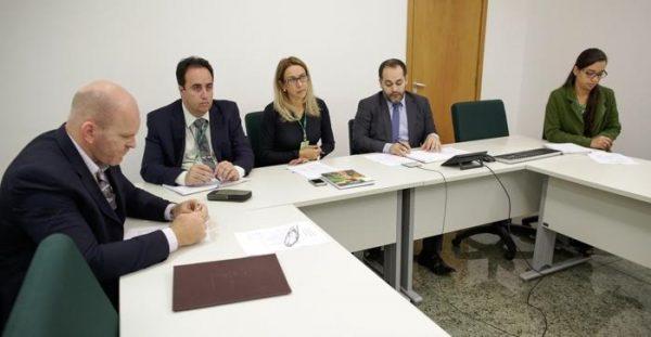 Representantes da ATeG do Senar e do Mapa participaram de uma videoconferência com as regionais envolvidas no projeto.