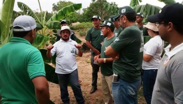 Alunos da Rede E-Tec, (polo de Balsas), em visita de campo.